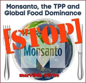 stop monsanto marvada carne